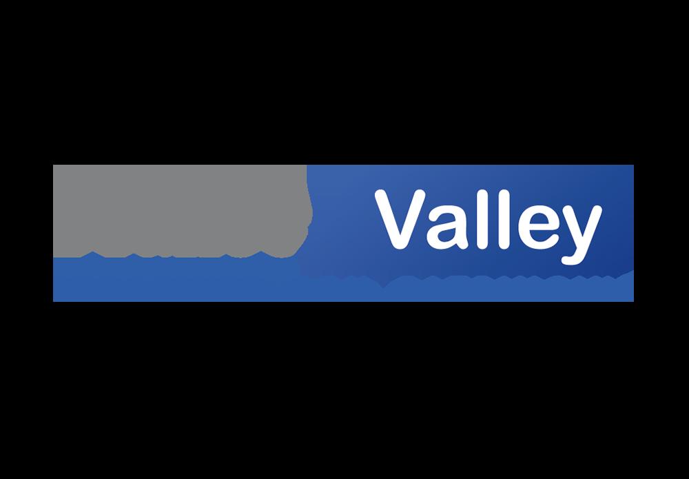 France-Valley-Investissements-logo